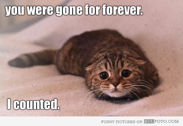 gone_forever